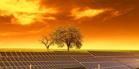 energie cooperatie